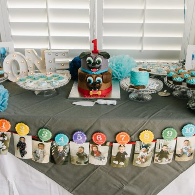 Cayden's First Birthday Party